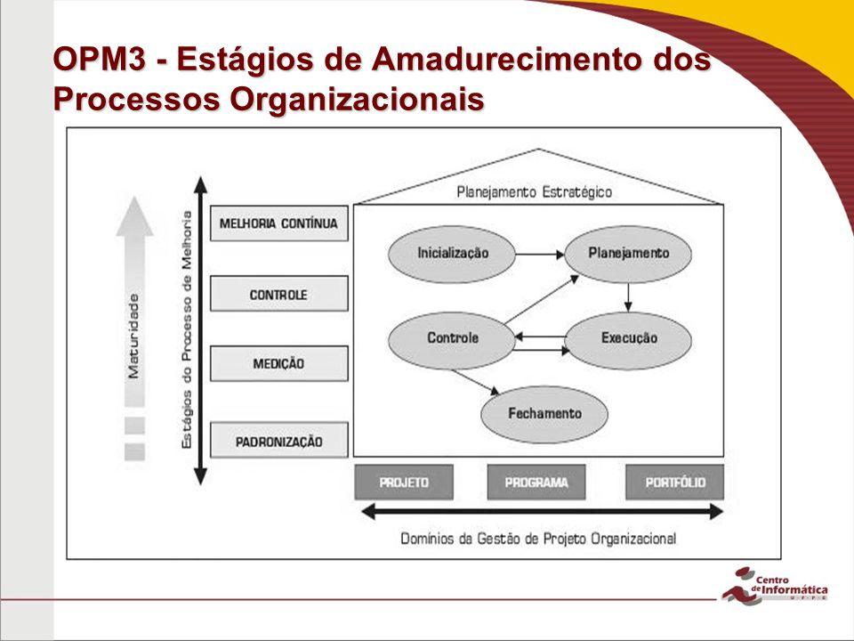 OPM3 - Estágios de Amadurecimento dos Processos Organizacionais