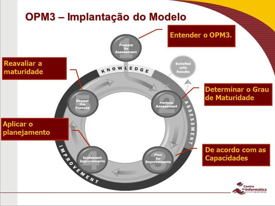 OPM3 – Implantação do Modelo Entender o OPM3.