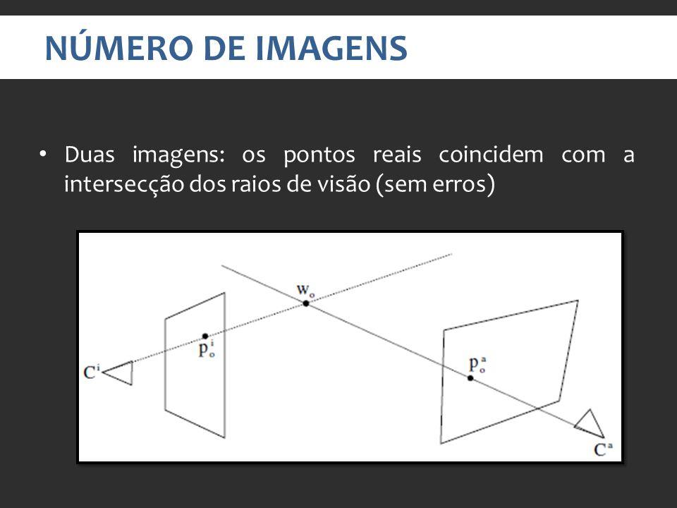 Duas imagens: os pontos reais coincidem com a intersecção dos raios de visão (sem erros) NÚMERO DE IMAGENS