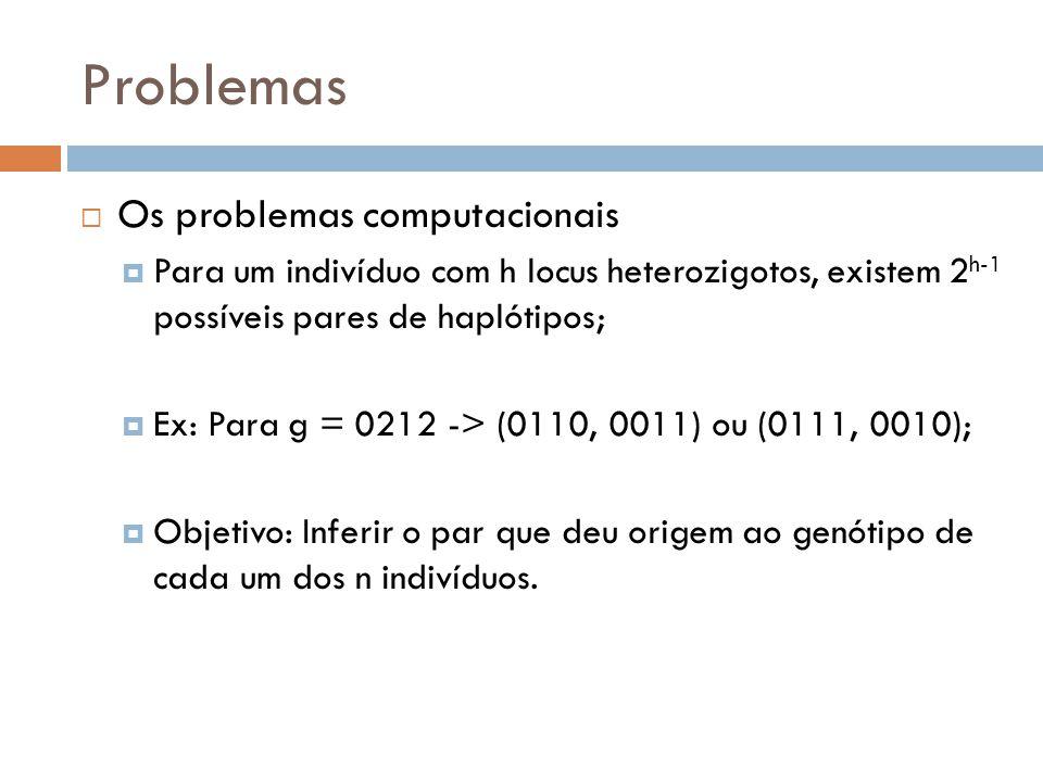Problemas Os problemas computacionais Para um indivíduo com h locus heterozigotos, existem 2 h-1 possíveis pares de haplótipos; Ex: Para g = 0212 -> (