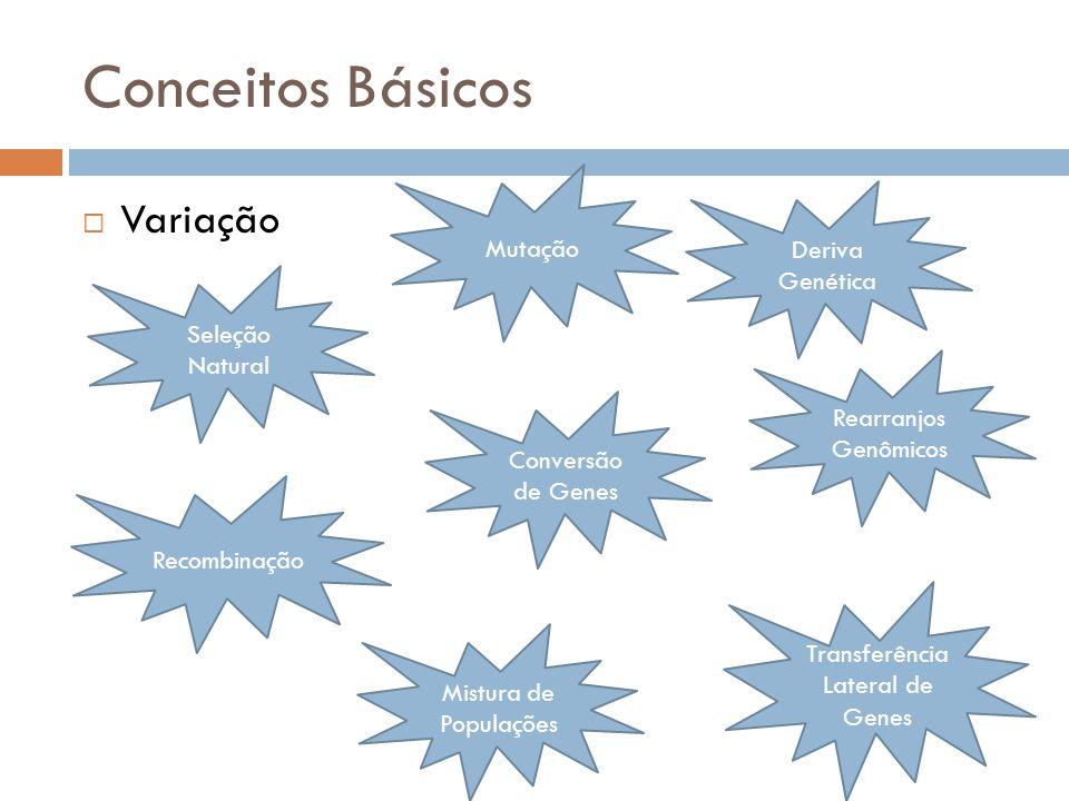 Conceitos Básicos Variação Vasta variedade de genótipos; Desafio: Encontrar genótipos associados a traços; Variação alélica = número de alelos (polimorfismo) presentes.