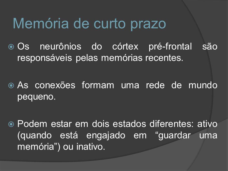 Os neurônios do córtex pré-frontal são responsáveis pelas memórias recentes. As conexões formam uma rede de mundo pequeno. Podem estar em dois estados