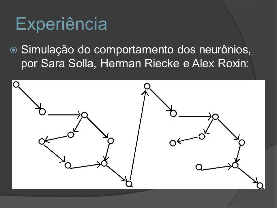 Simulação do comportamento dos neurônios, por Sara Solla, Herman Riecke e Alex Roxin: Experiência