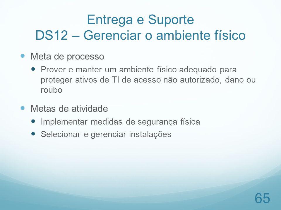 Entrega e Suporte DS12 – Gerenciar o ambiente físico Meta de processo Prover e manter um ambiente físico adequado para proteger ativos de TI de acesso