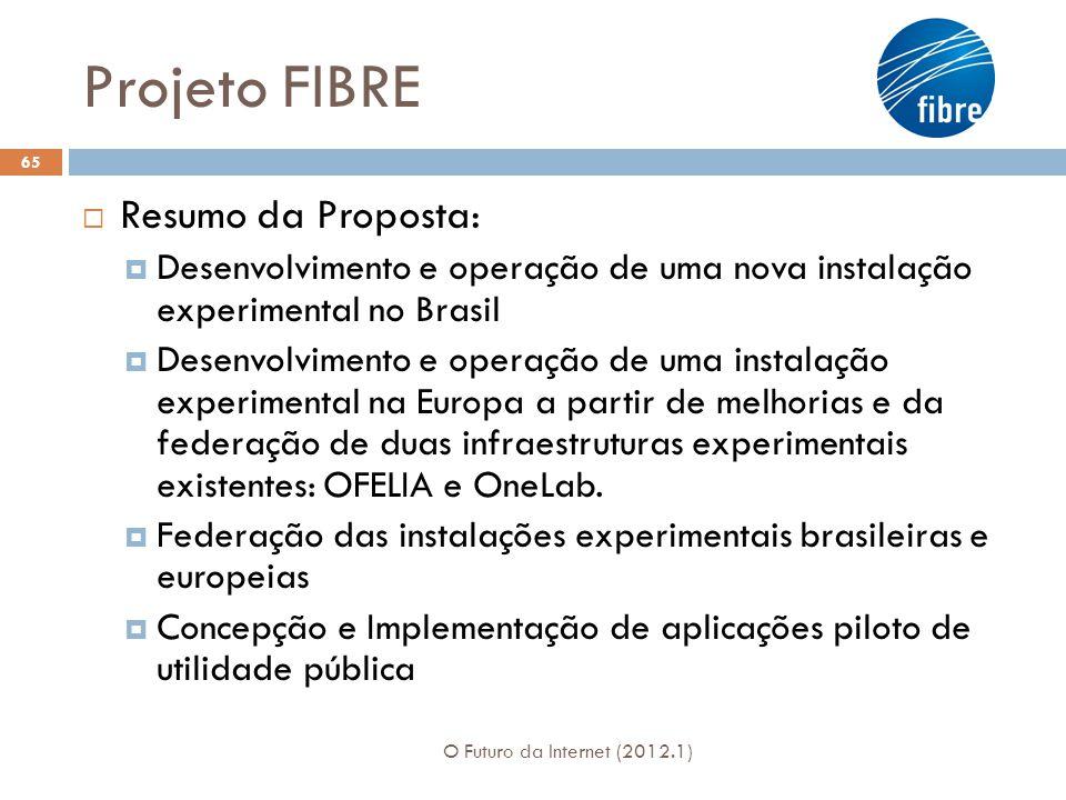 Projeto FIBRE Resumo da Proposta: Desenvolvimento e operação de uma nova instalação experimental no Brasil Desenvolvimento e operação de uma instalaçã
