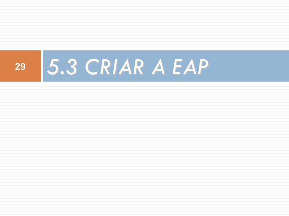 5.3 CRIAR A EAP 29