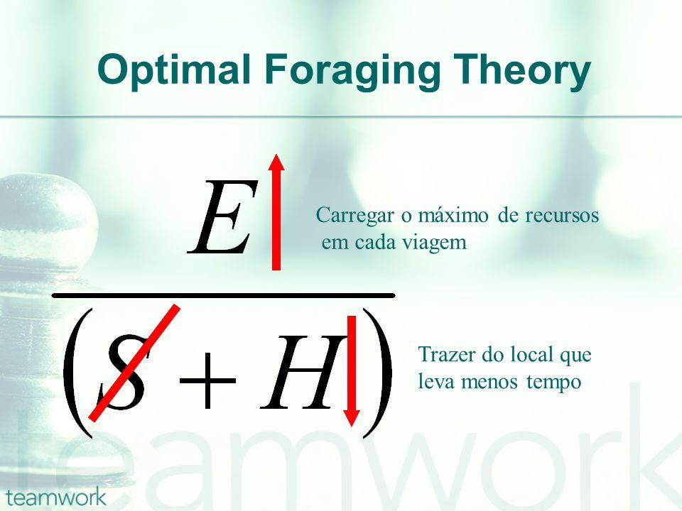 Optimal Foraging Theory Carregar o máximo de recursos em cada viagem Trazer do local que leva menos tempo