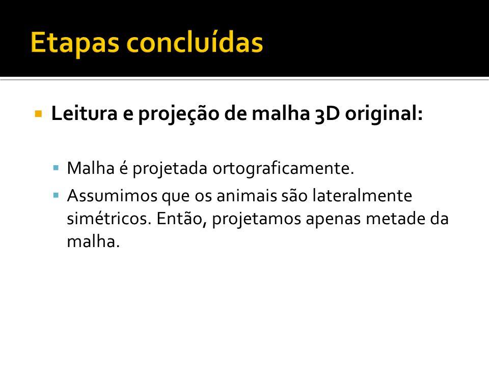Leitura e projeção de malha 3D original: Malha é projetada ortograficamente.