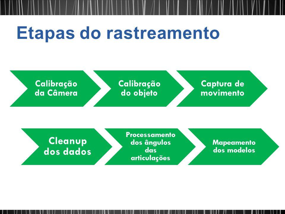 Calibração da Câmera Calibração do objeto Captura de movimento Cleanup dos dados Processamento dos ângulos das articulações Mapeamento dos modelos