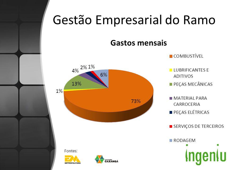 Exemplo Local Política de incentivo à economia de combustível: – Impacto de 5% no balanço Instalação de câmeras: – Impacto de 6% no balanço