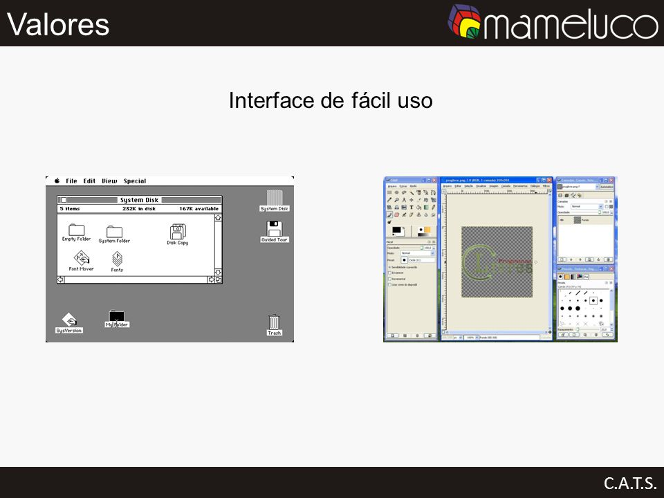 Valores C.A.T.S. Interface de fácil uso