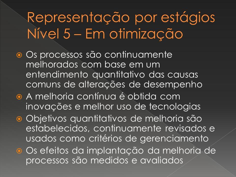 NívelDescrição 0Incompleto 1Realizado 2Gerenciado 3Definido 4Gerenciado quantitativamente 5Em otimização