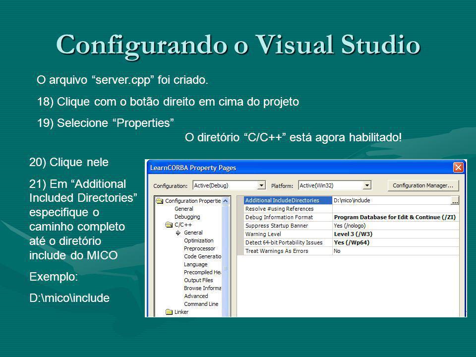 Configurando o Visual Studio O arquivo server.cpp foi criado.
