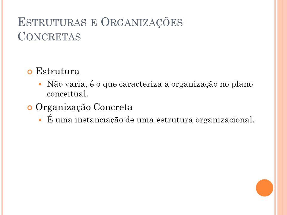 E STRUTURAS E O RGANIZAÇÕES C ONCRETAS Estrutura Não varia, é o que caracteriza a organização no plano conceitual.