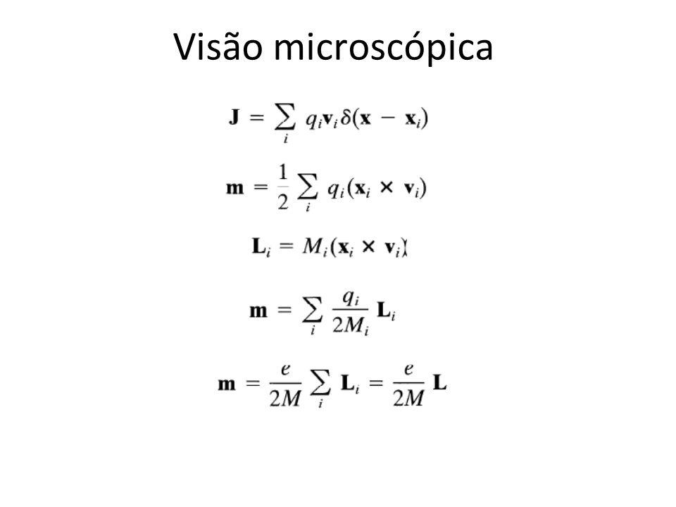Visão microscópica