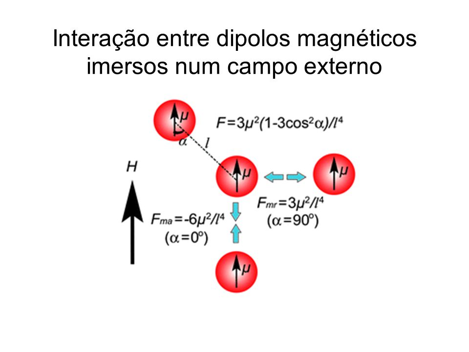 Interação entre dipolos magnéticos imersos num campo externo