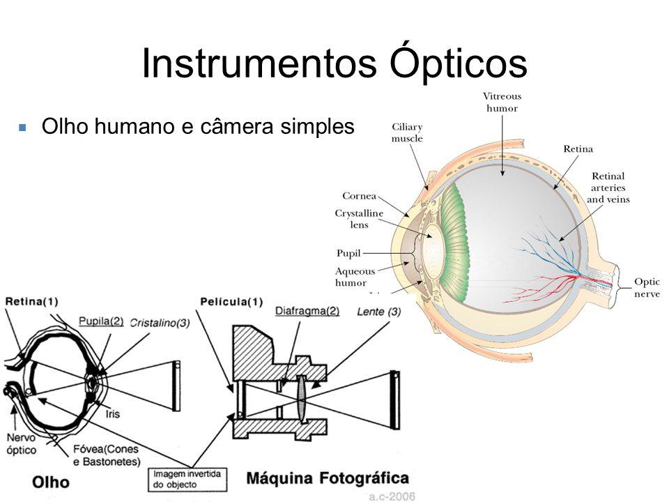 Instrumentos Ópticos Olho humano e câmera simples