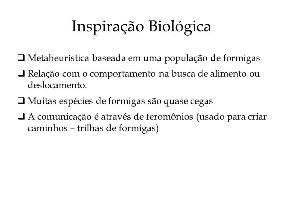 Inspiração Biológica Metaheurística baseada em uma população de formigas Relação com o comportamento na busca de alimento ou deslocamento. Muitas espé