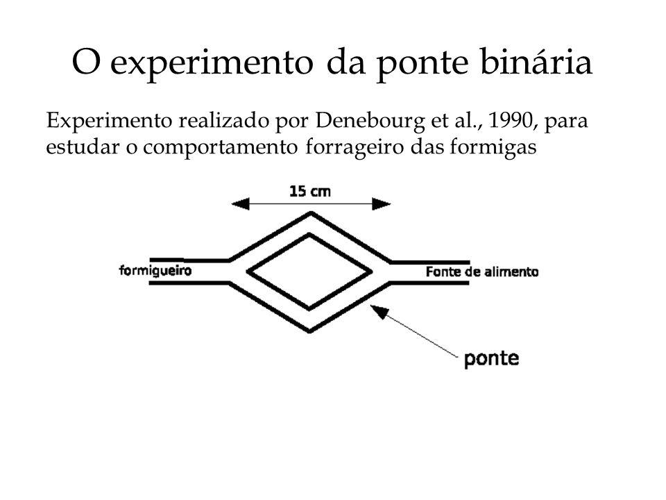 O experimento da ponte binária Experimento realizado por Denebourg et al., 1990, para estudar o comportamento forrageiro das formigas