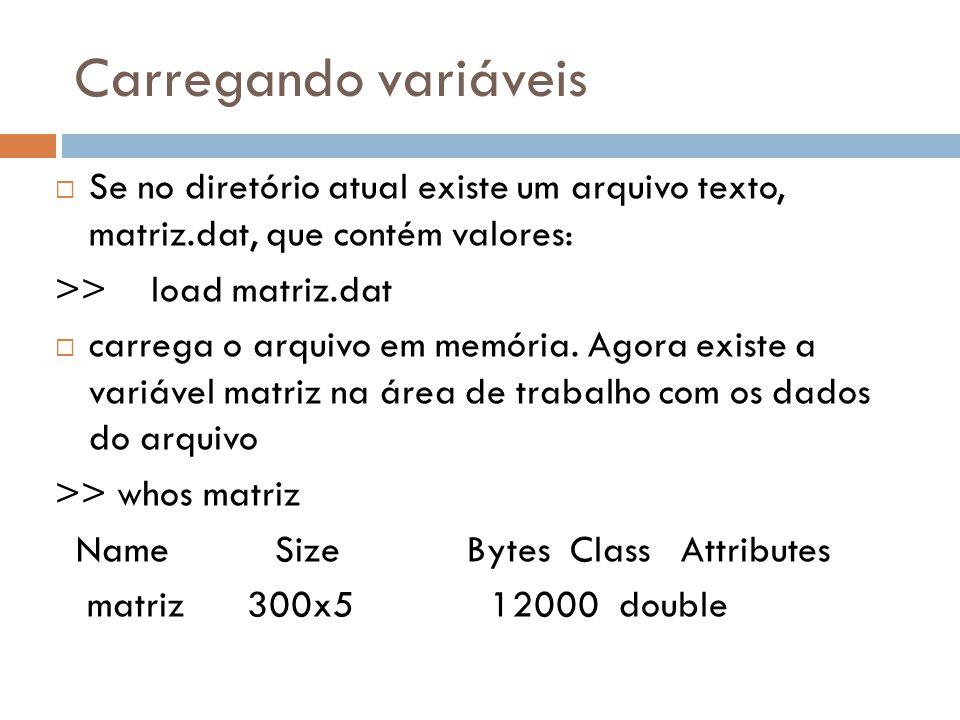 Carregando variáveis Se no diretório atual existe um arquivo texto, matriz.dat, que contém valores: >>load matriz.dat carrega o arquivo em memória. Ag