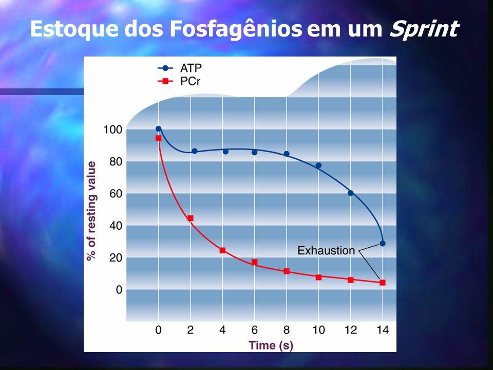 Ressíntese do ATP à partir da PCr:
