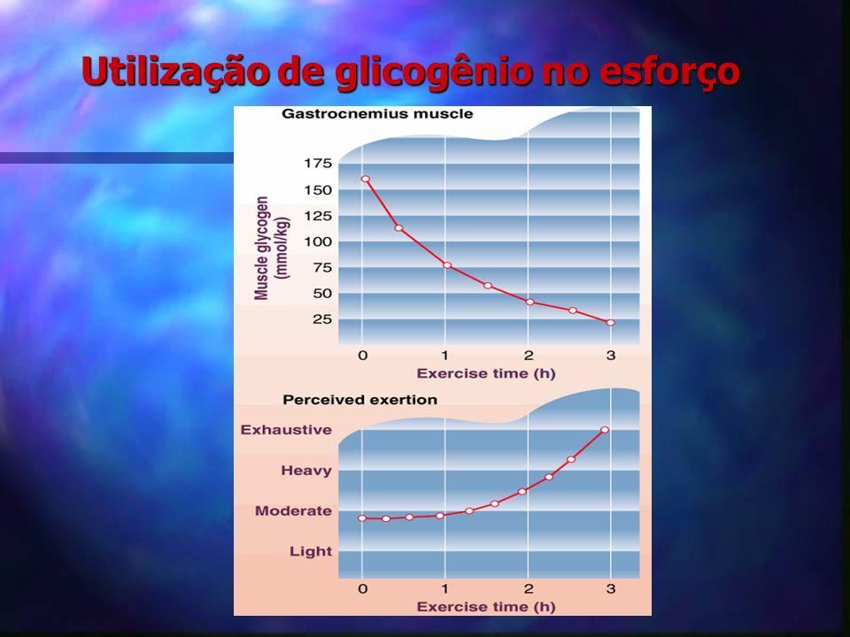 Glicólise Até 2 minutos Anaeróbica lática Ativ. de alta intensidade Possui o lactato como limitador Recuperação mais longa Potencializa o gasto energé