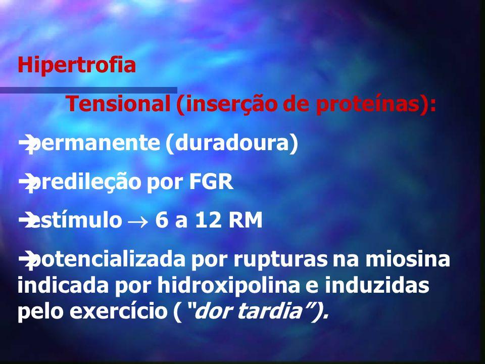 4. Respostas ao Treinamento 1. Hipertrofia sarcoplasmática (metabólica): temporária predileção FOL Estímulo 13 a 30 RM