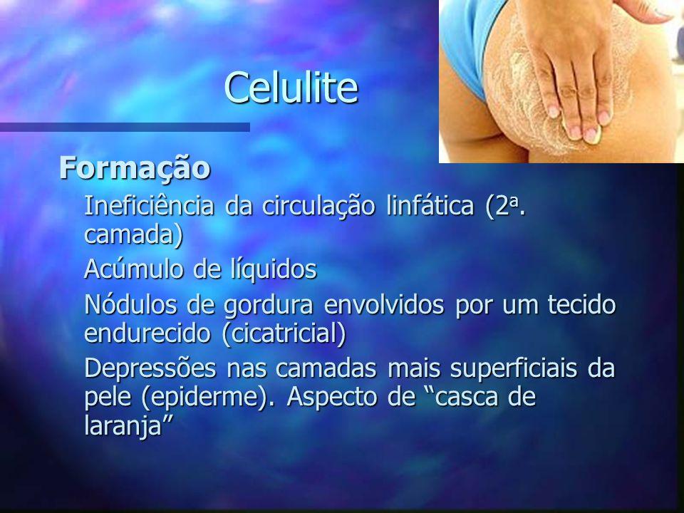 Tônus Muscular Protocolo de Treinamento Alternância de séries com alta intensidade e altos volumes