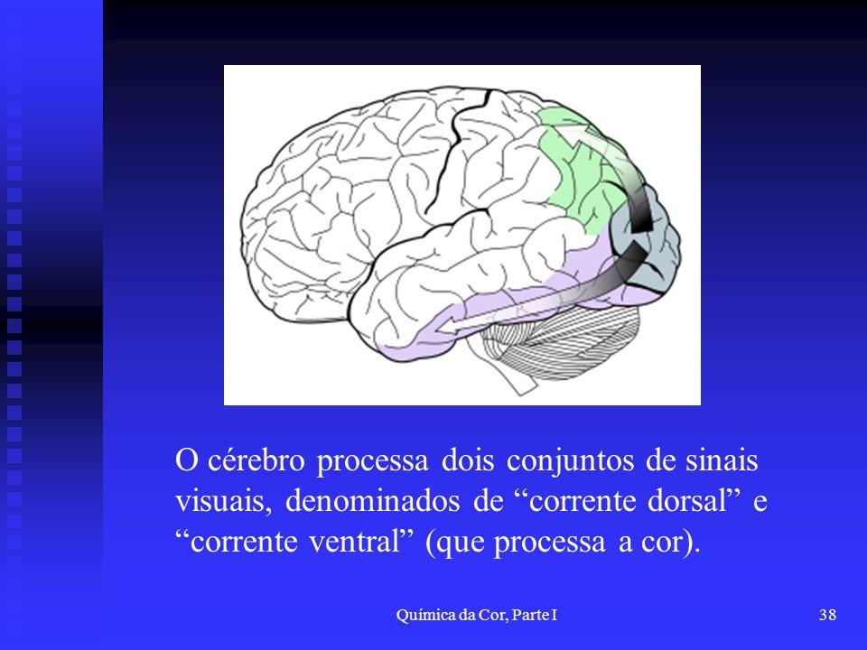 Química da Cor, Parte I38 O cérebro processa dois conjuntos de sinais visuais, denominados de corrente dorsal e corrente ventral (que processa a cor).