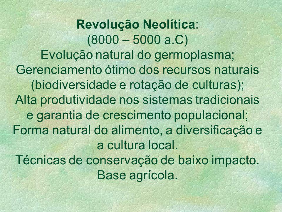 Sociedades de Tradição: Instinto /Empirismo; Da vida nômade à vida em comunidades; Caça e coleta à agricultura e pecuária; Processo evolucionário, oco