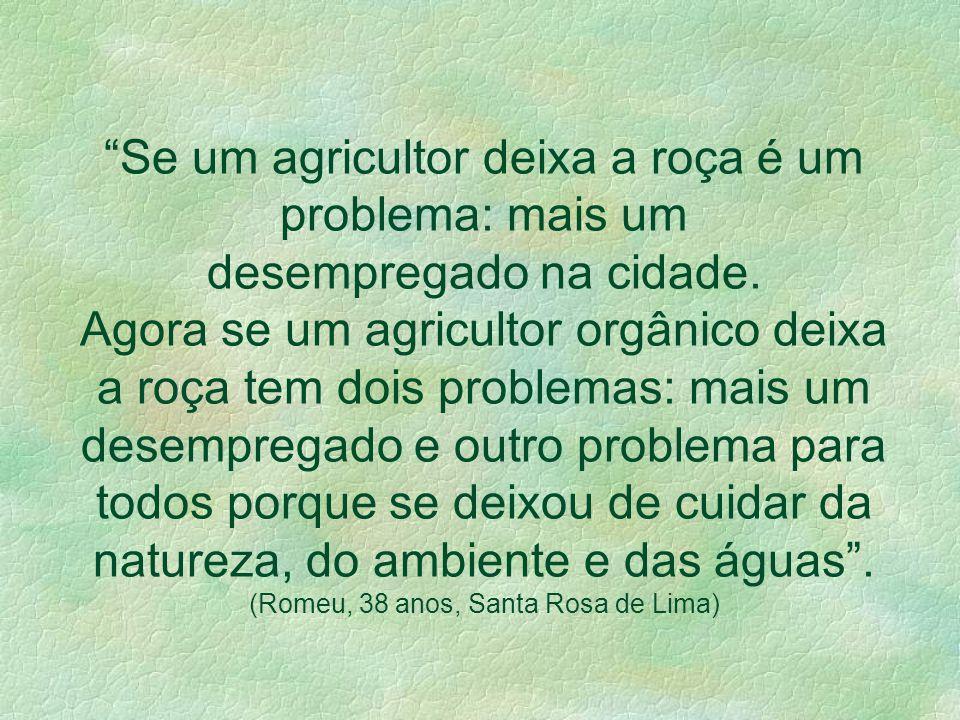 Alimento Familiar Orgânico e a Promoção da Saúde Humana, Ambiental e Social O acréscimo justo do alimento orgânico merece ser compreendido dentro da ó