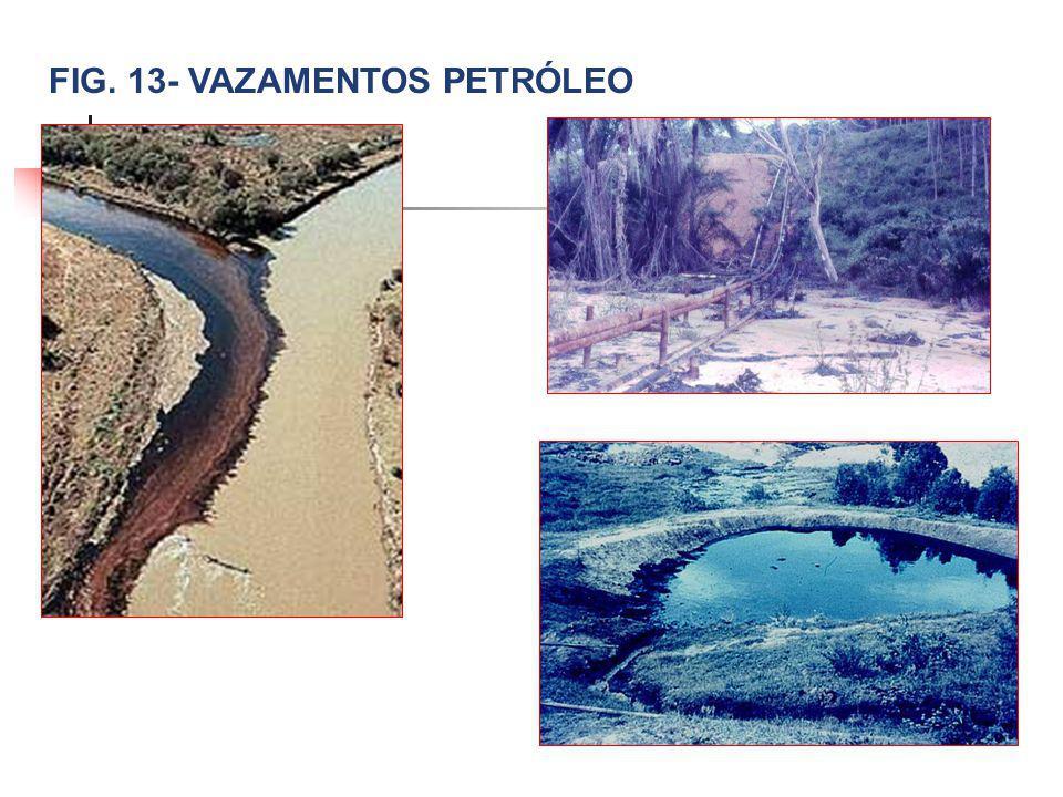 FIG. 13- VAZAMENTOS PETRÓLEO