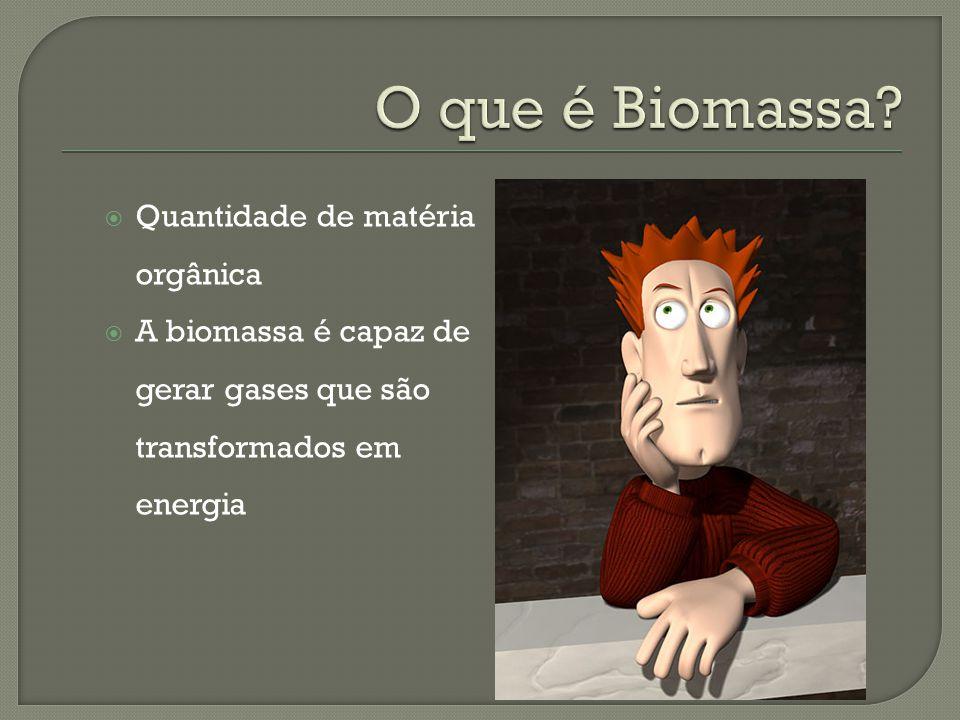 Quantidade de matéria orgânica A biomassa é capaz de gerar gases que são transformados em energia