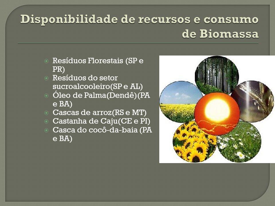 Resíduos Florestais (SP e PR) Resíduos do setor sucroalcooleiro(SP e AL) Óleo de Palma(Dendê)(PA e BA) Cascas de arroz(RS e MT) Castanha de Caju(CE e PI) Casca do cocô-da-baia (PA e BA)