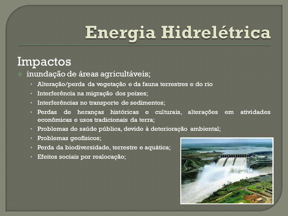 Impactos inundação de áreas agricultáveis; Alteração/perda da vegetação e da fauna terrestres e do rio Interferência na migração dos peixes; Interferê
