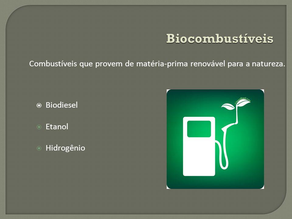 Biodiesel Etanol Hidrogênio Combustíveis que provem de matéria-prima renovável para a natureza.