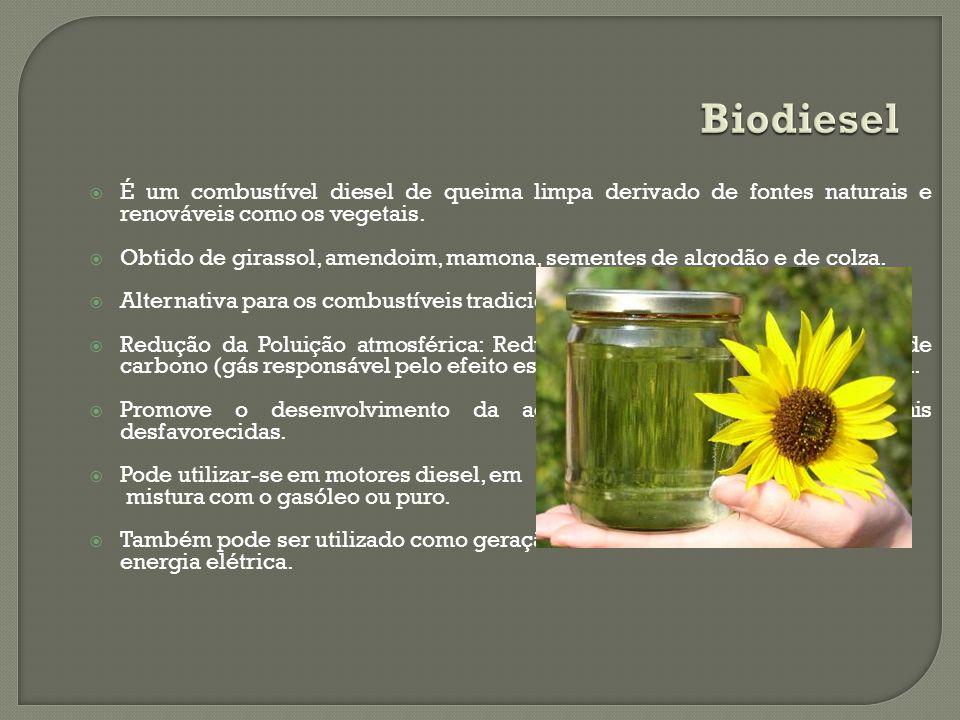 É um combustível diesel de queima limpa derivado de fontes naturais e renováveis como os vegetais. Obtido de girassol, amendoim, mamona, sementes de a