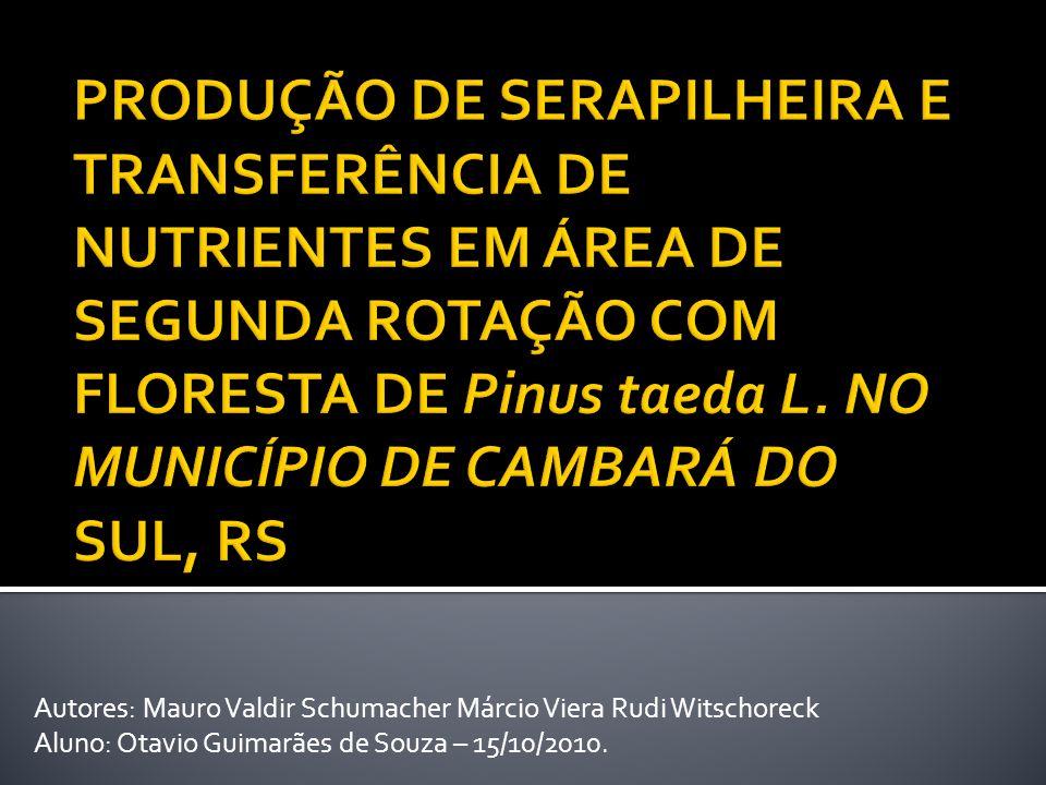Autores: Mauro Valdir Schumacher Márcio Viera Rudi Witschoreck Aluno: Otavio Guimarães de Souza – 15/10/2010.