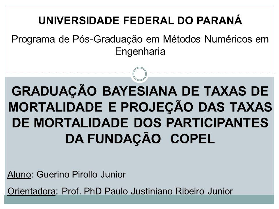 AGRADECIMENTOS Orientador: Prof.PhD.