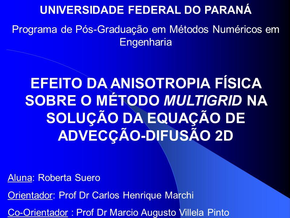 UNIVERSIDADE FEDERAL DO PARANÁ Programa de Pós-Graduação em Métodos Numéricos em Engenharia EFEITO DA ANISOTROPIA FÍSICA SOBRE O MÉTODO MULTIGRID NA SOLUÇÃO DA EQUAÇÃO DE ADVECÇÃO-DIFUSÃO 2D Aluna: Roberta Suero Orientador: Prof Dr Carlos Henrique Marchi Co-Orientador : Prof Dr Marcio Augusto Villela Pinto