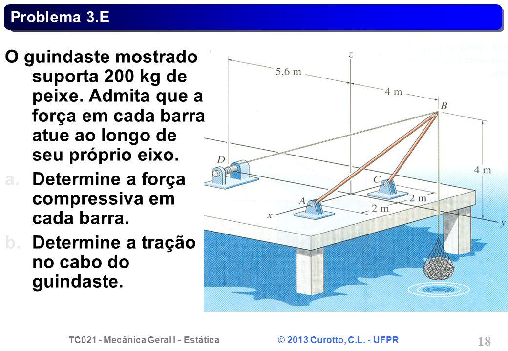 TC021 - Mecânica Geral I - Estática © 2013 Curotto, C.L. - UFPR 18 Problema 3.E O guindaste mostrado suporta 200 kg de peixe. Admita que a força em ca