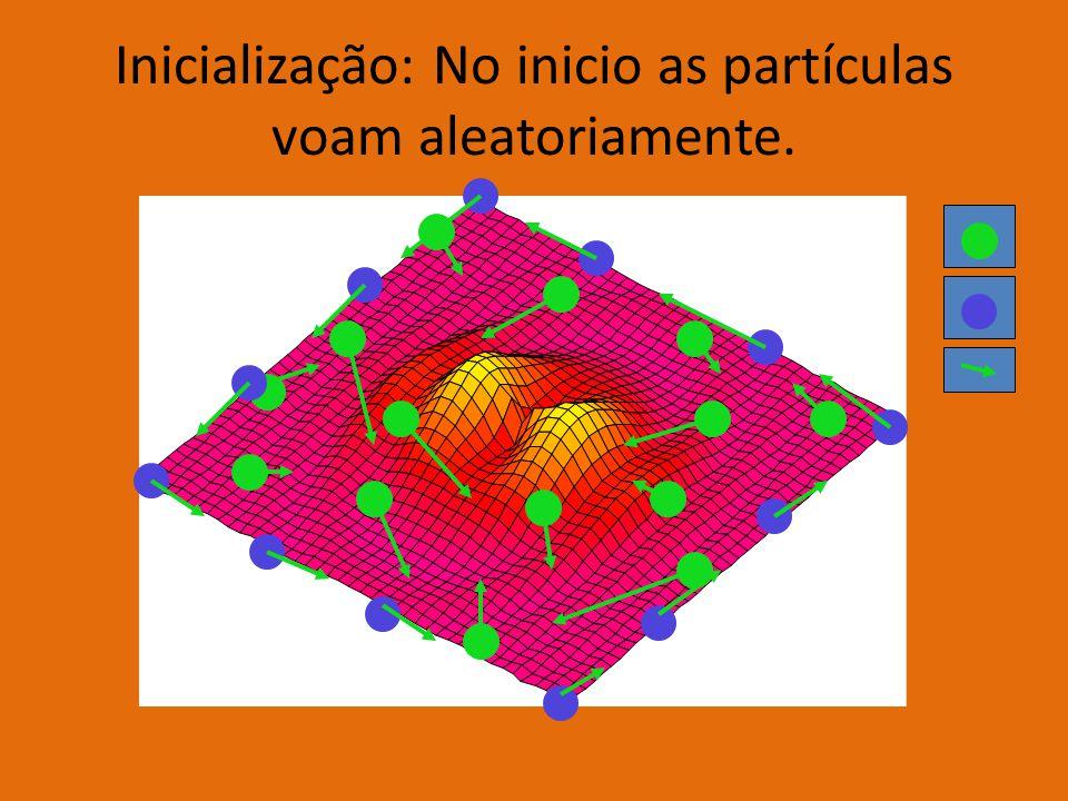 Inicialização: No inicio as partículas voam aleatoriamente.