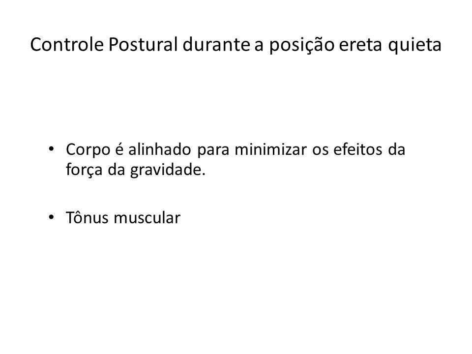 Controle Postural durante a posição ereta quieta Corpo é alinhado para minimizar os efeitos da força da gravidade. Tônus muscular