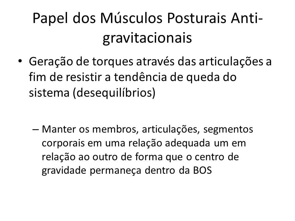 Papel dos Músculos Posturais Anti- gravitacionais Geração de torques através das articulações a fim de resistir a tendência de queda do sistema (deseq