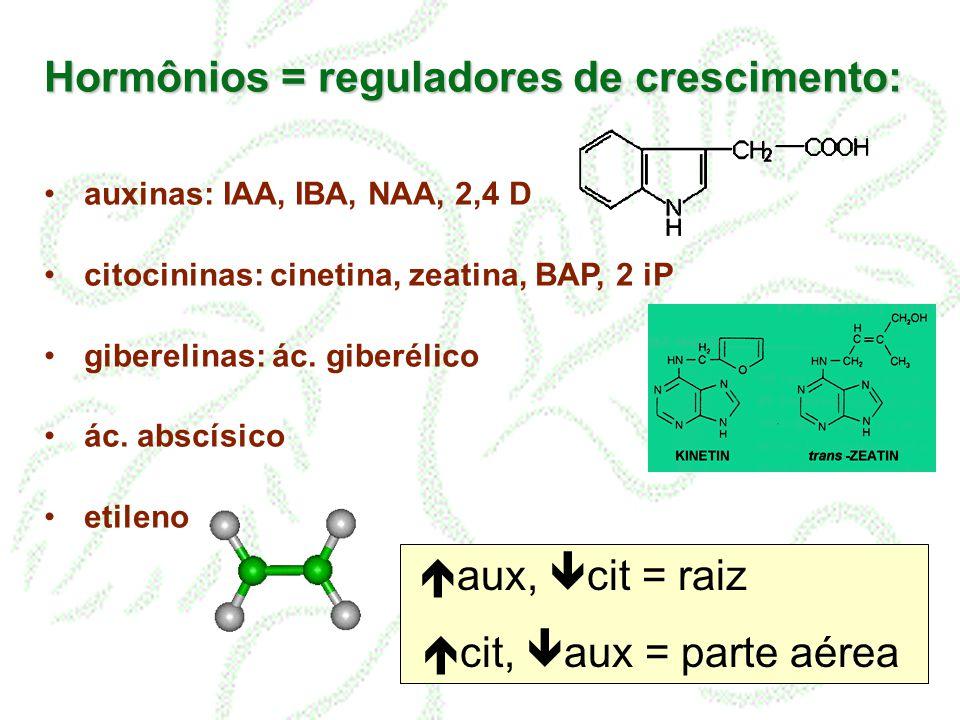 Hormônios = reguladores de crescimento: auxinas: IAA, IBA, NAA, 2,4 D citocininas: cinetina, zeatina, BAP, 2 iP giberelinas: ác. giberélico ác. abscís
