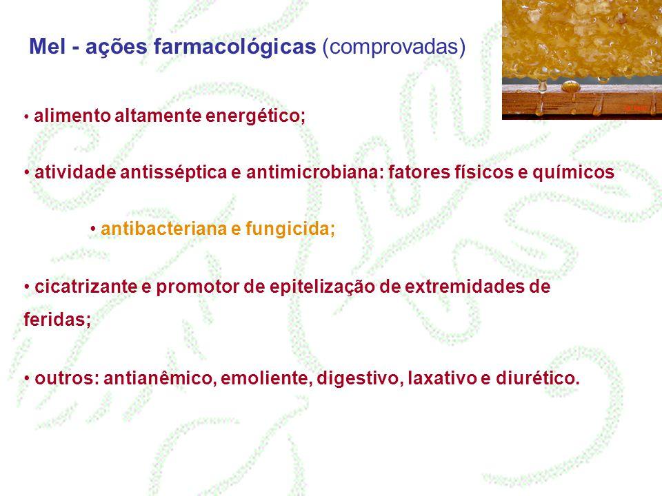Mel - ações farmacológicas (comprovadas) alimento altamente energético; atividade antisséptica e antimicrobiana: fatores físicos e químicos antibacter