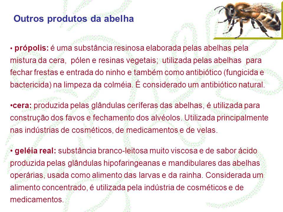Outros produtos da abelha própolis: é uma substância resinosa elaborada pelas abelhas pela mistura da cera, pólen e resinas vegetais; utilizada pelas