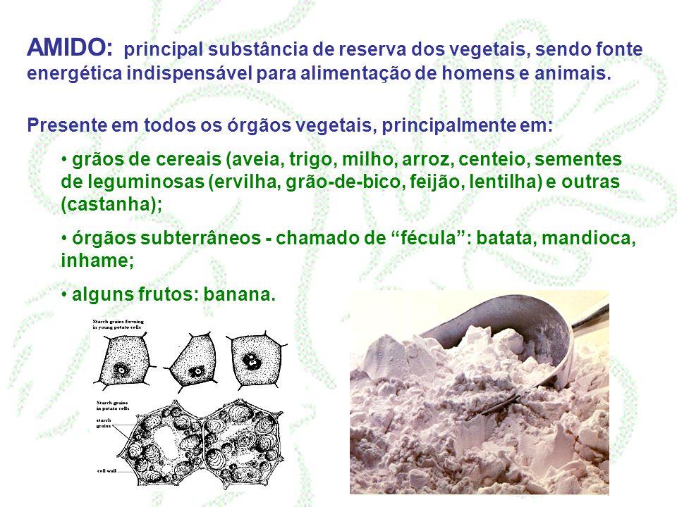 AMIDO: principal substância de reserva dos vegetais, sendo fonte energética indispensável para alimentação de homens e animais. Presente em todos os ó