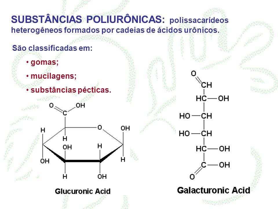 SUBSTÂNCIAS POLIURÔNICAS: polissacarídeos heterogêneos formados por cadeias de ácidos urônicos. São classificadas em: gomas; mucilagens; substâncias p