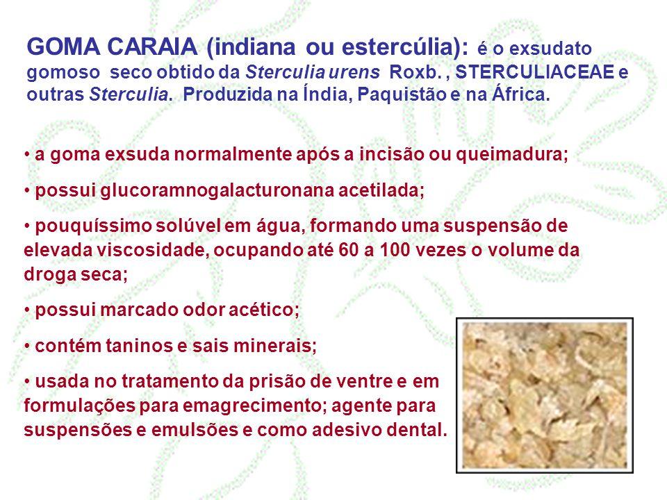 GOMA CARAIA (indiana ou estercúlia): é o exsudato gomoso seco obtido da Sterculia urens Roxb., STERCULIACEAE e outras Sterculia. Produzida na Índia, P